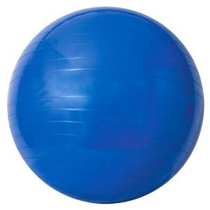 Bola Gina Acte Sports com bomba de ar 65 cm